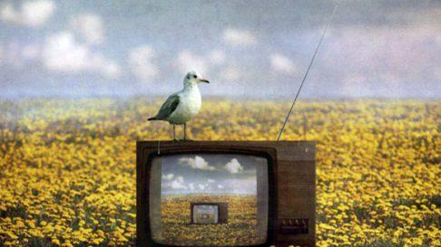 Первая в мире телевизионная передача